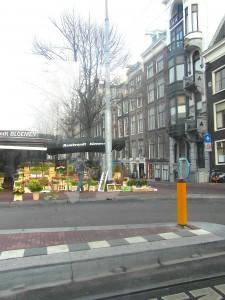 flowers-amsterdam