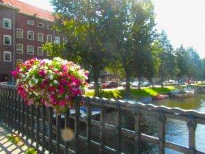 flower-amsterdam